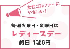 毎週火曜日・金曜日はレディースデー 終日1球6円+消費税