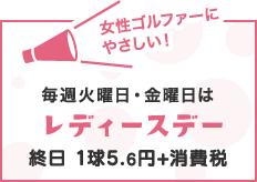毎週火曜日・金曜日はレディースデー 終日1球5.6円+消費税